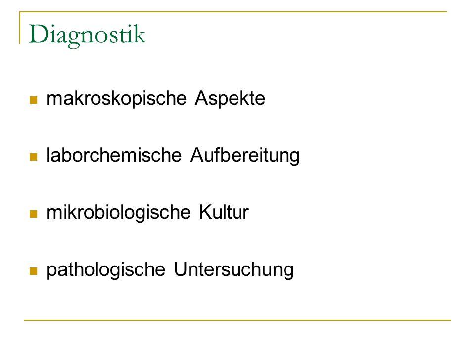 Diagnostik makroskopische Aspekte laborchemische Aufbereitung mikrobiologische Kultur pathologische Untersuchung