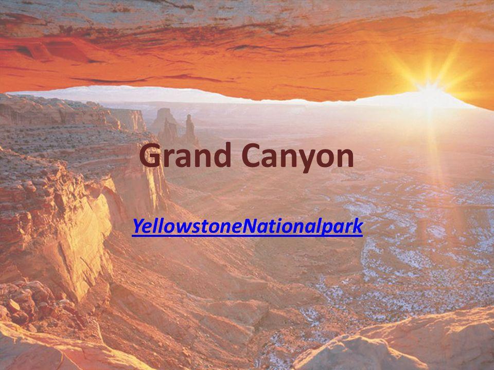 Grand Canyon YellowstoneNationalpark