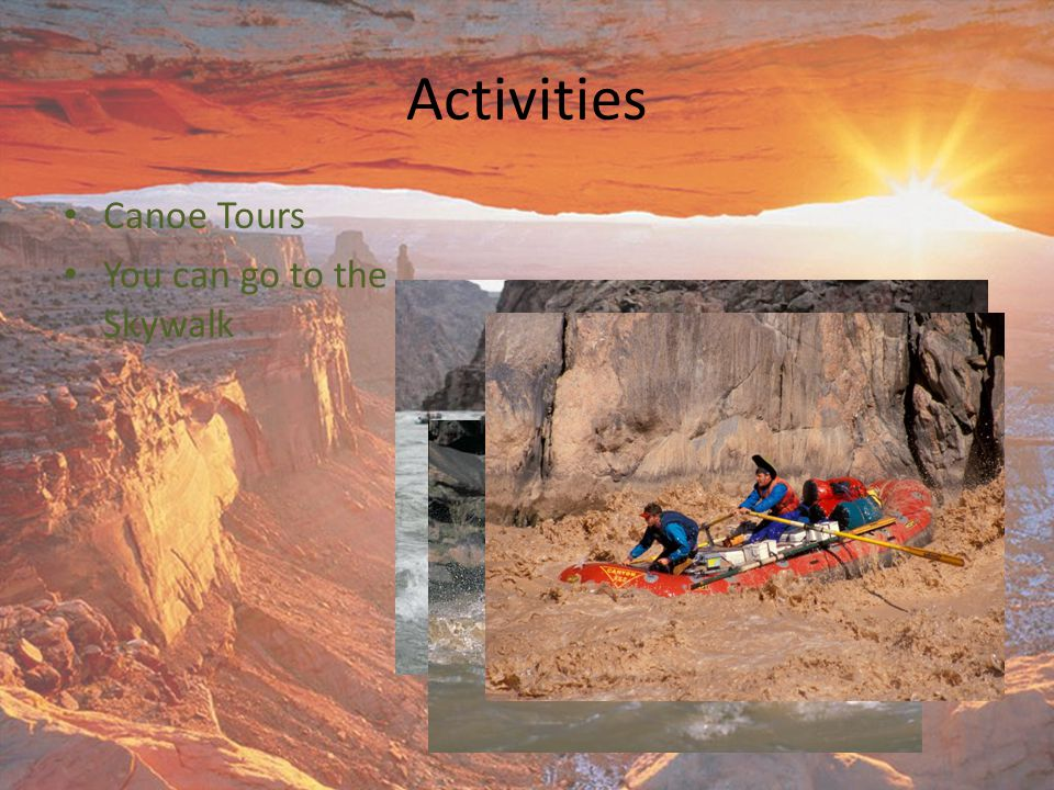 Activities Canoe Tours You can go to the Skywalk
