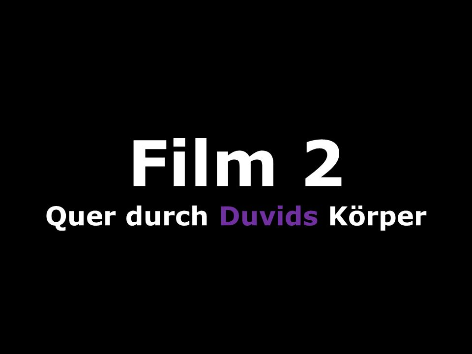 Film 2 Quer durch Duvids Körper