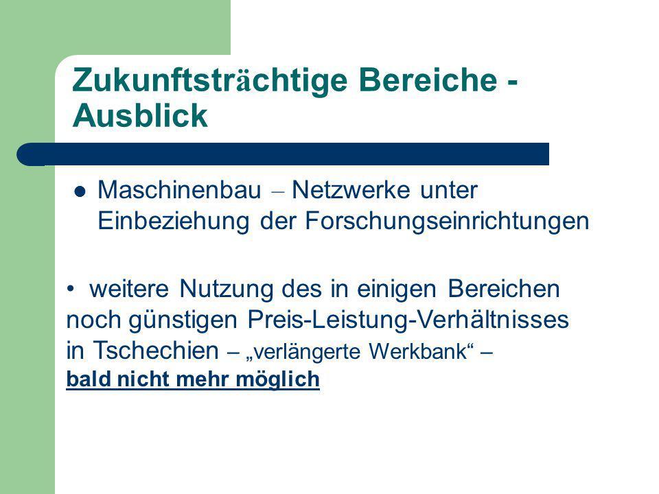 """Zukunftstr ä chtige Bereiche - Ausblick Maschinenbau – Netzwerke unter Einbeziehung der Forschungseinrichtungen weitere Nutzung des in einigen Bereichen noch günstigen Preis-Leistung-Verhältnisses in Tschechien – """"verlängerte Werkbank – bald nicht mehr möglich"""