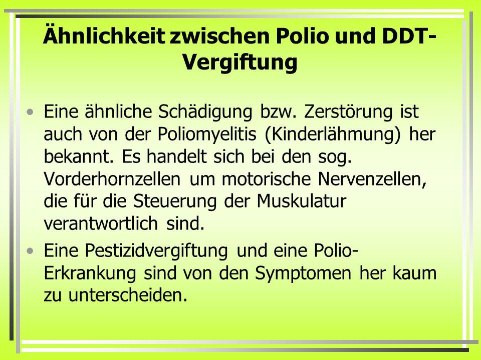 Ähnlichkeit zwischen Polio und DDT- Vergiftung Eine ähnliche Schädigung bzw.