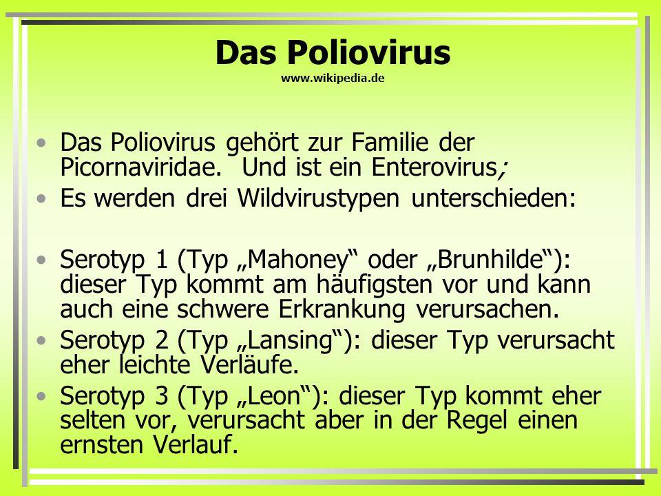 Das Poliovirus www.wikipedia.de Das Poliovirus gehört zur Familie der Picornaviridae.