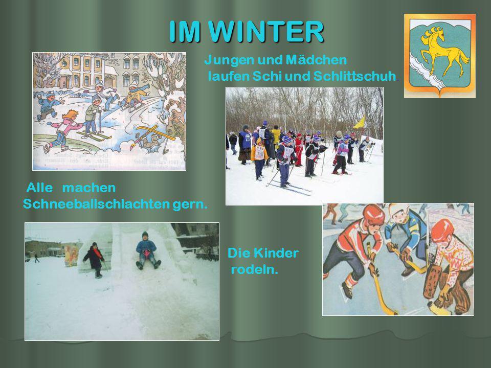 IM WINTER Die Kinder rodeln. Jungen und Mädchen laufen Schi und Schlittschuh. Alle machen Schneeballschlachten gern.