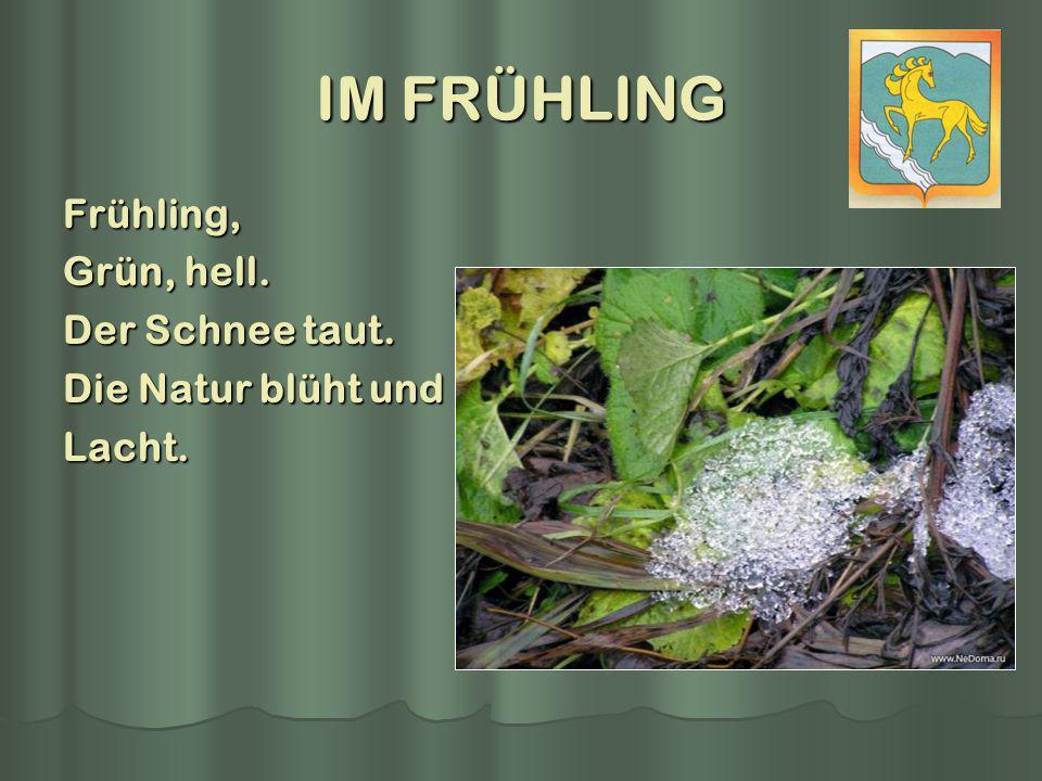 IM FRÜHLING Frühling, Grün, hell. Der Schnee taut. Die Natur blüht und Lacht.