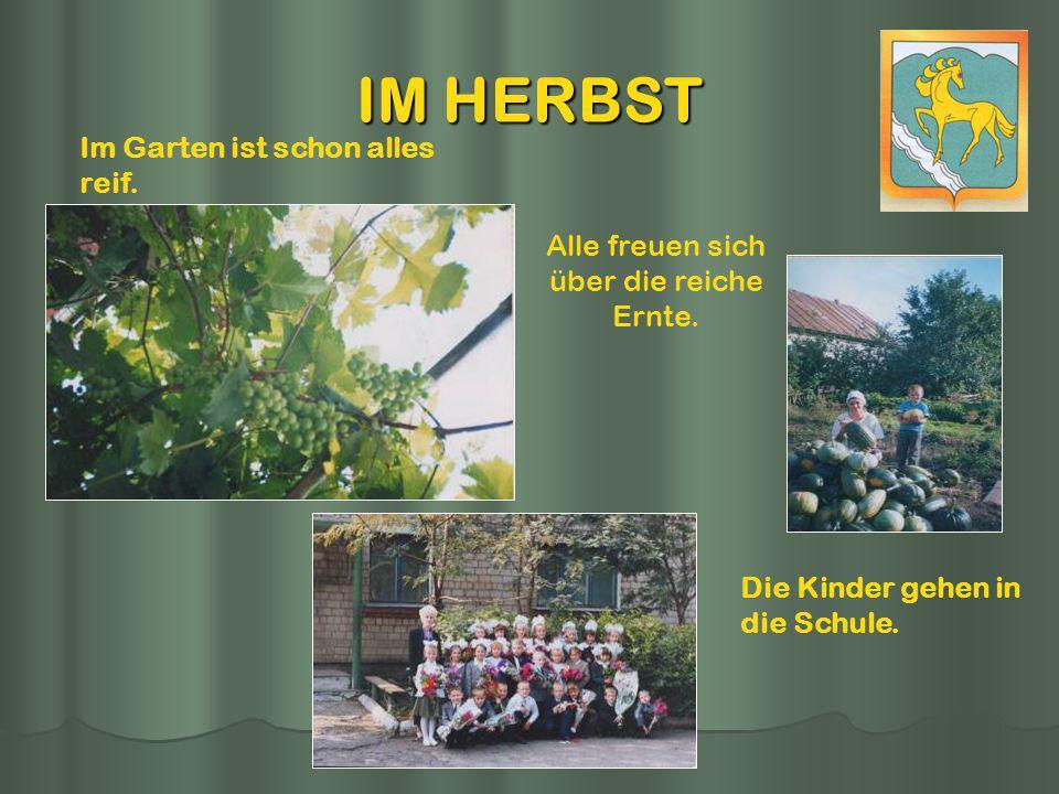 IM HERBST Im Garten ist schon alles reif. Alle freuen sich über die reiche Ernte. Die Kinder gehen in die Schule.
