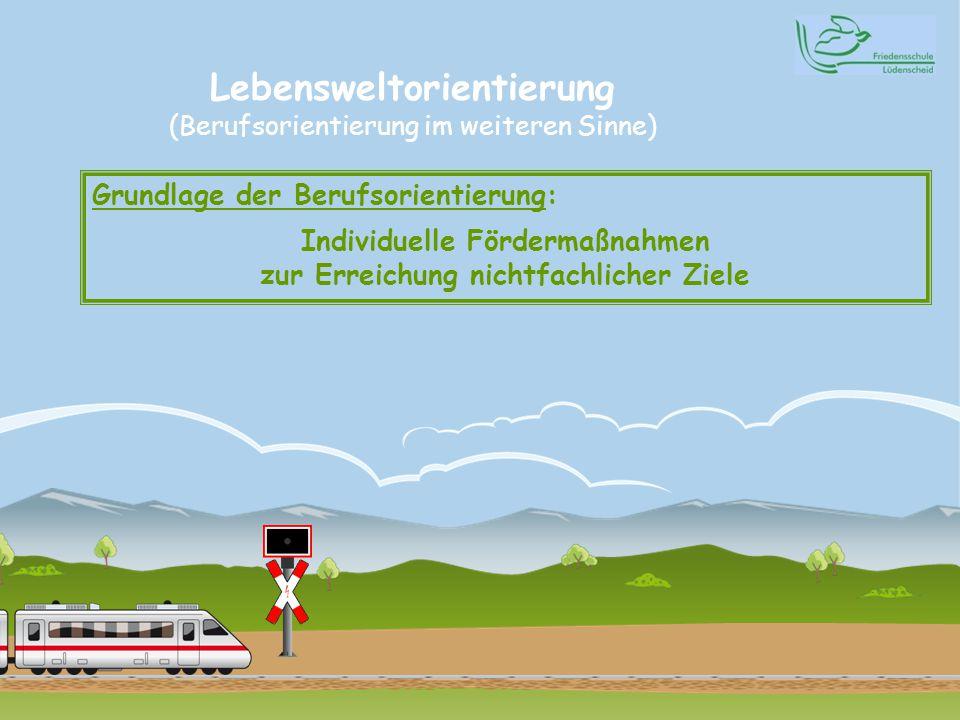 Lebensweltorientierung (Berufsorientierung im weiteren Sinne) Grundlage der Berufsorientierung: Individuelle Fördermaßnahmen zur Erreichung nichtfachlicher Ziele