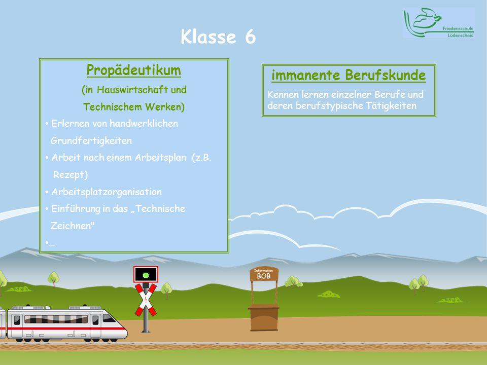 Klasse 6 Propädeutikum (in Hauswirtschaft und Technischem Werken) Erlernen von handwerklichen Grundfertigkeiten Arbeit nach einem Arbeitsplan (z.B. Re