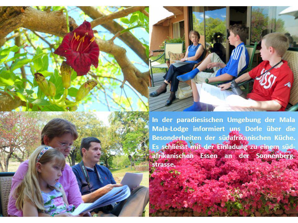 Vera spricht über die Pflanzenwelt Südafrikas. Auch über den Affenbrotbaum im Hintergrund.