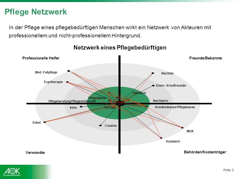 Folie: 3 Pflege Netzwerk Behörden/Kostenträger Professionelle Helfer Freunde/Bekannte Verwandte Krankenkasse/Pflegekasse MDK Sozialamt Sohn Enkel Cous
