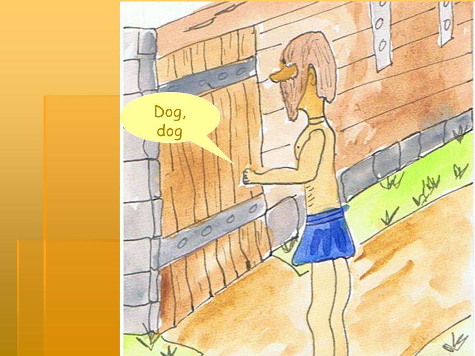 Dog, dog