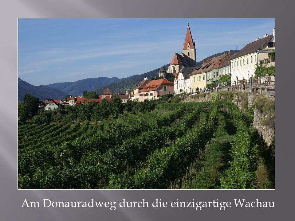 Am Donauradweg durch die einzigartige Wachau