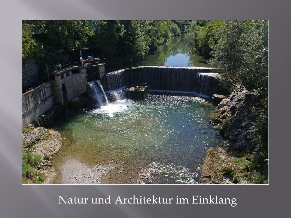 Natur und Architektur im Einklang