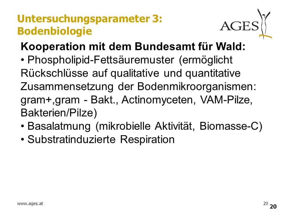 www.ages.at20 Untersuchungsparameter 3: Bodenbiologie Kooperation mit dem Bundesamt für Wald: Phospholipid-Fettsäuremuster (ermöglicht Rückschlüsse au