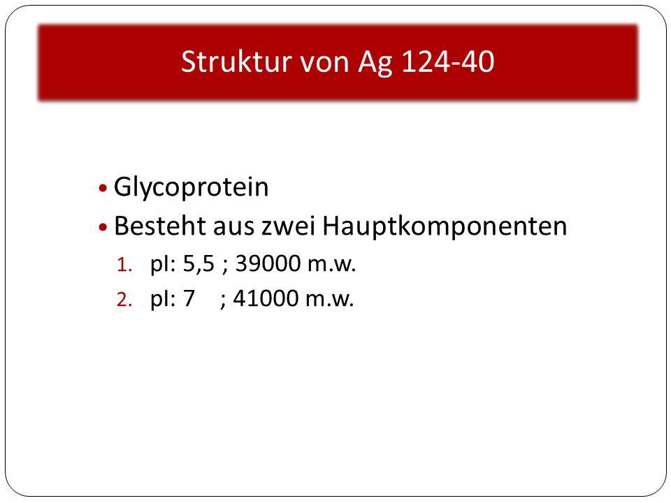 Struktur von Ag 124-40 Glycoprotein Besteht aus zwei Hauptkomponenten 1. pI: 5,5 ; 39000 m.w. 2. pI: 7 ; 41000 m.w.