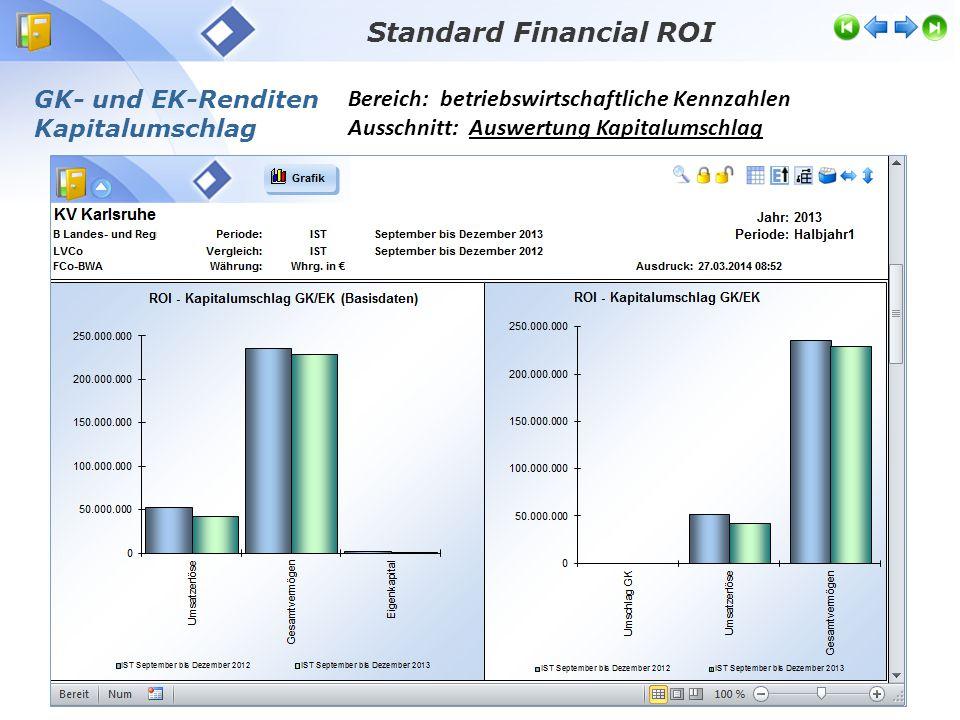 Standard Financial ROI Bereich: betriebswirtschaftliche Kennzahlen Ausschnitt: Auswertung Kapitalumschlag GK- und EK-Renditen Kapitalumschlag