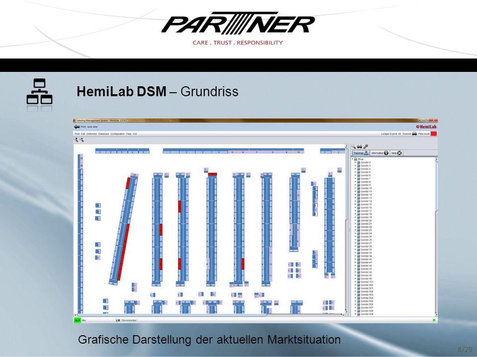 HemiLab DSM – Grundriss Grafische Darstellung der aktuellen Marktsituation 8/29