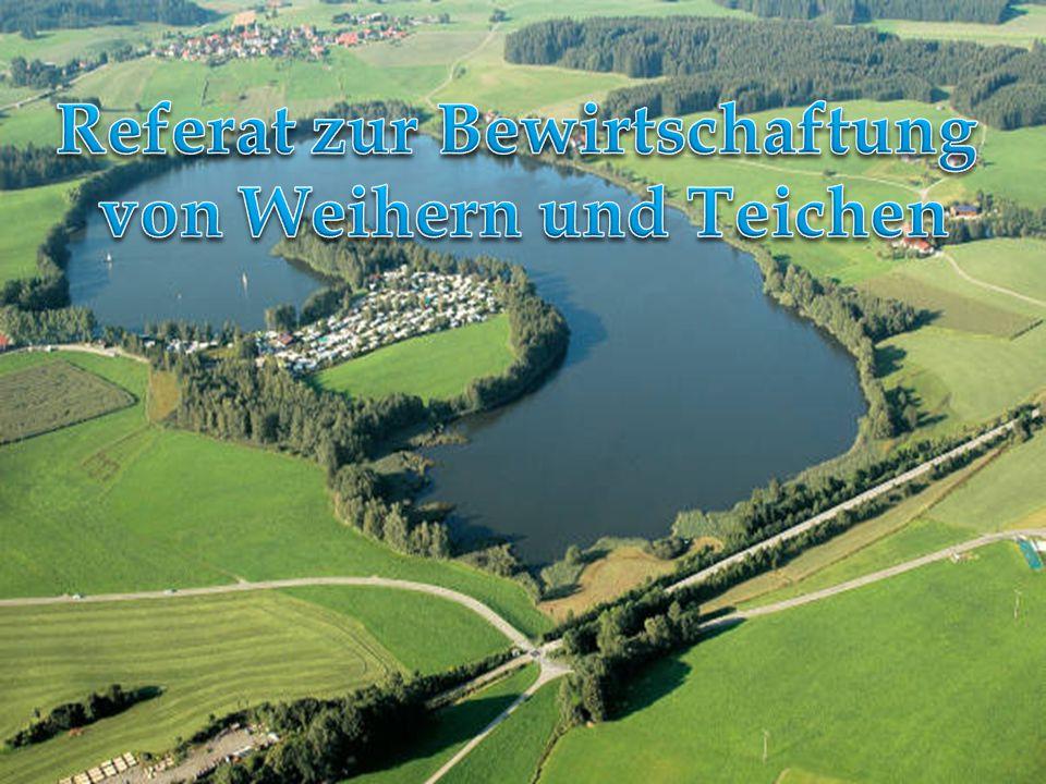 Anlage in Sachsen Fütterungsbereich