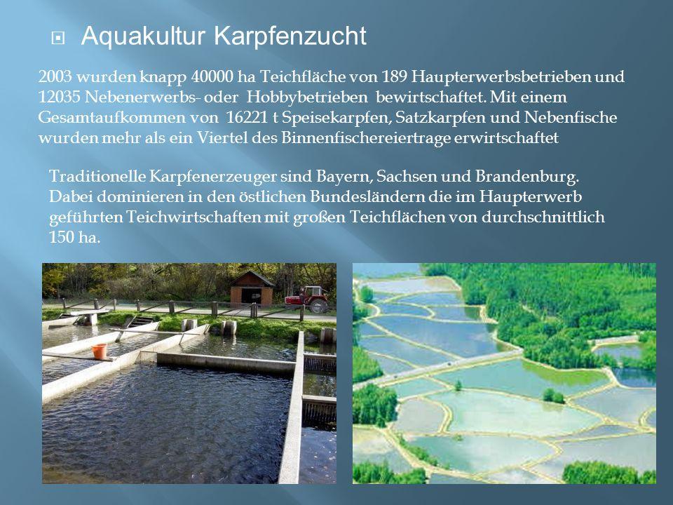  Aquakultur Karpfenzucht 2003 wurden knapp 40000 ha Teichfläche von 189 Haupterwerbsbetrieben und 12035 Nebenerwerbs- oder Hobbybetrieben bewirtschaf