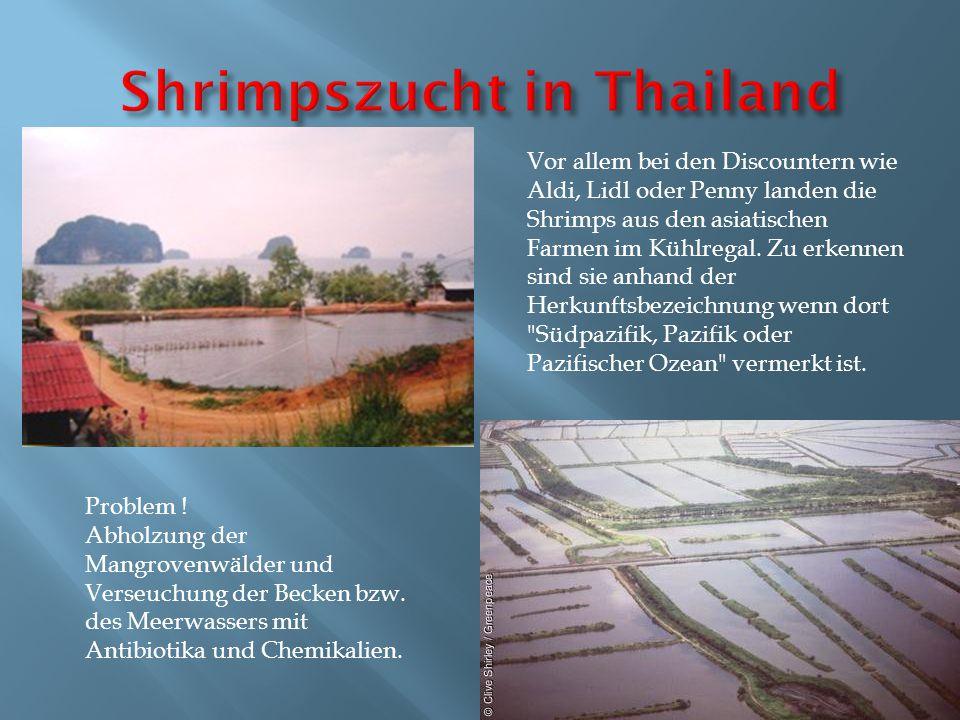 Vor allem bei den Discountern wie Aldi, Lidl oder Penny landen die Shrimps aus den asiatischen Farmen im Kühlregal. Zu erkennen sind sie anhand der He