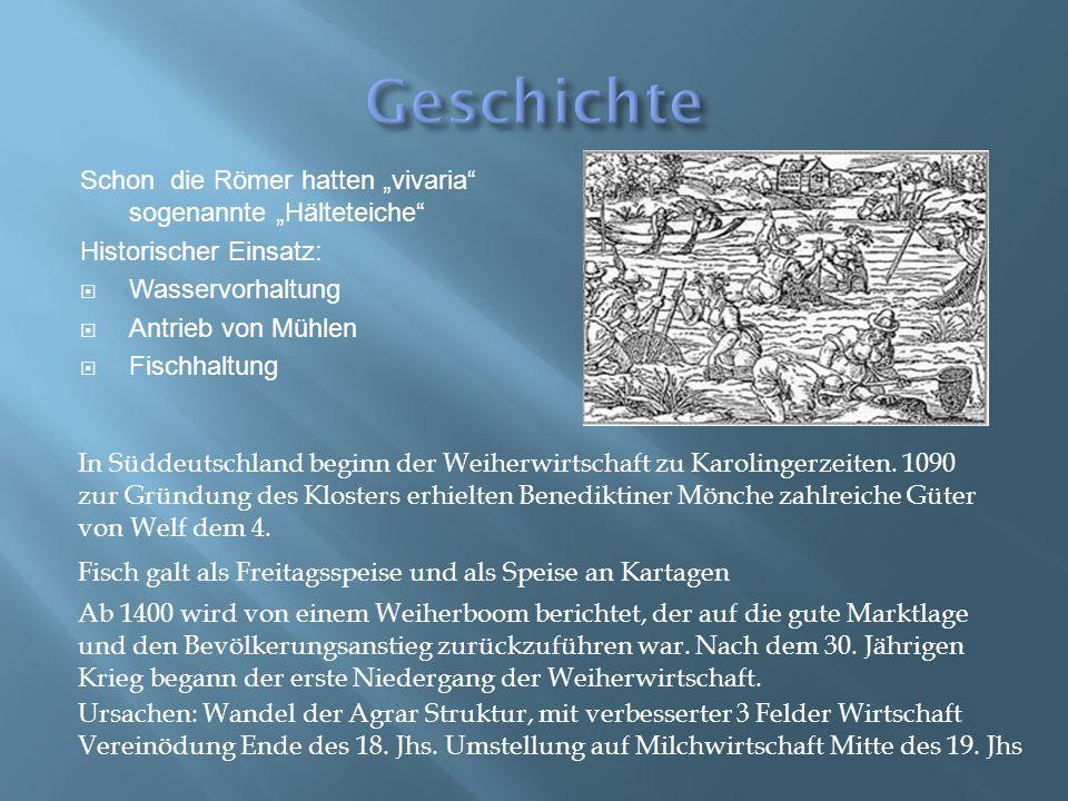 """Schon die Römer hatten """"vivaria"""" sogenannte """"Hälteteiche"""" Historischer Einsatz:  Wasservorhaltung  Antrieb von Mühlen  Fischhaltung In Süddeutschla"""