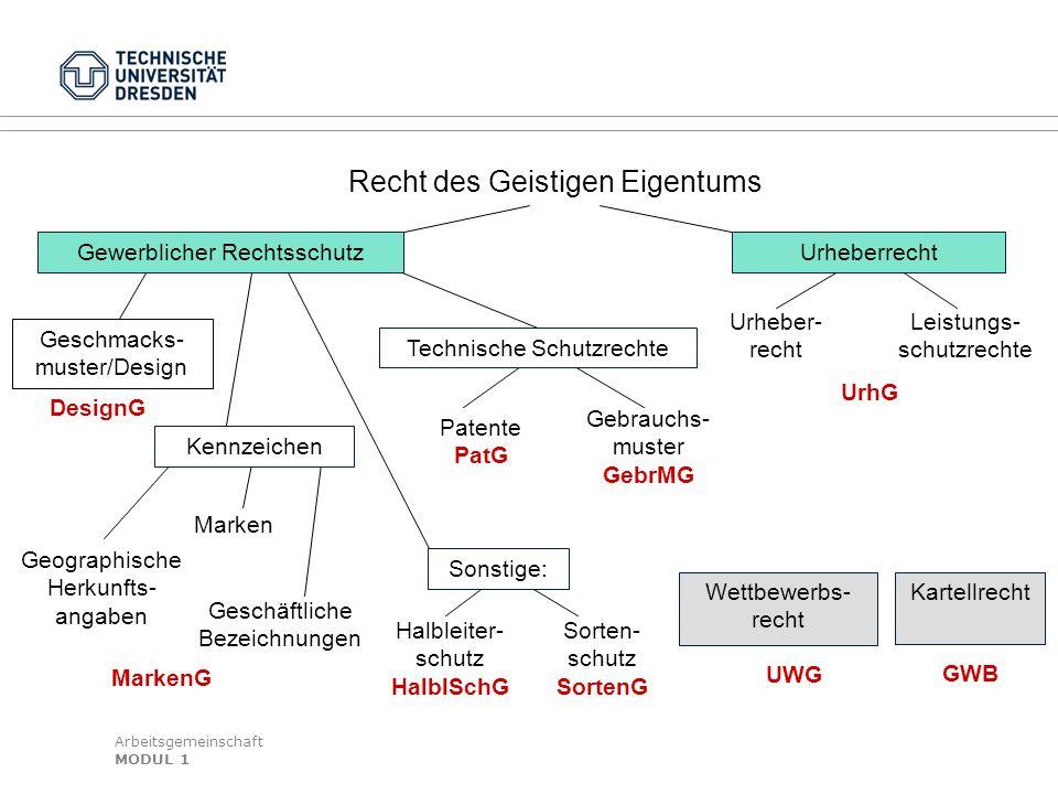 Arbeitsgemeinschaft MODUL 1 DesignG Geschmacks- muster/Design Geographische Herkunfts- angaben Geschäftliche Bezeichnungen Marken Kennzeichen MarkenG