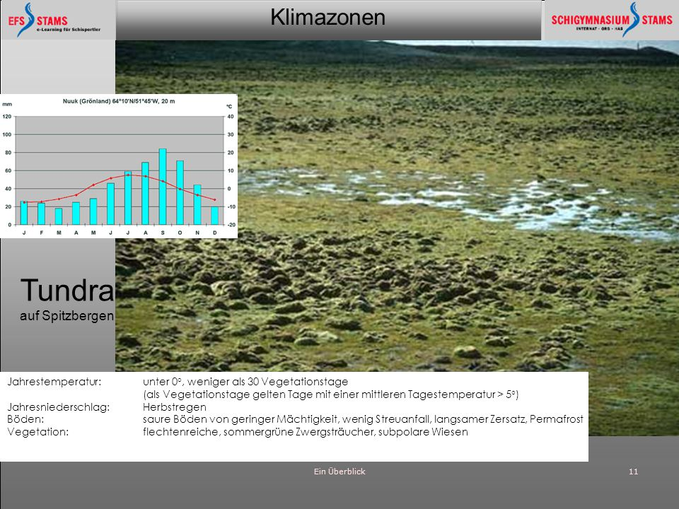 Klimazonen Ein Überblick11 Tundra auf Spitzbergen Jahrestemperatur: unter 0°, weniger als 30 Vegetationstage (als Vegetationstage gelten Tage mit eine