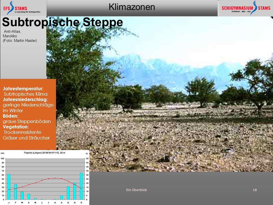 Klimazonen Ein Überblick18 Subtropische Steppe Anti-Atlas, Marokko (Foto: Martin Hasler) Jahrestemperatur: Subtropisches Klima Jahresniederschlag: ger