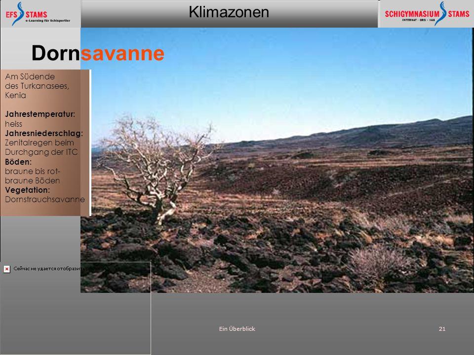 Klimazonen Ein Überblick21 Dornsavanne Am Südende des Turkanasees, Kenia Jahrestemperatur: heiss Jahresniederschlag: Zenitalregen beim Durchgang der I