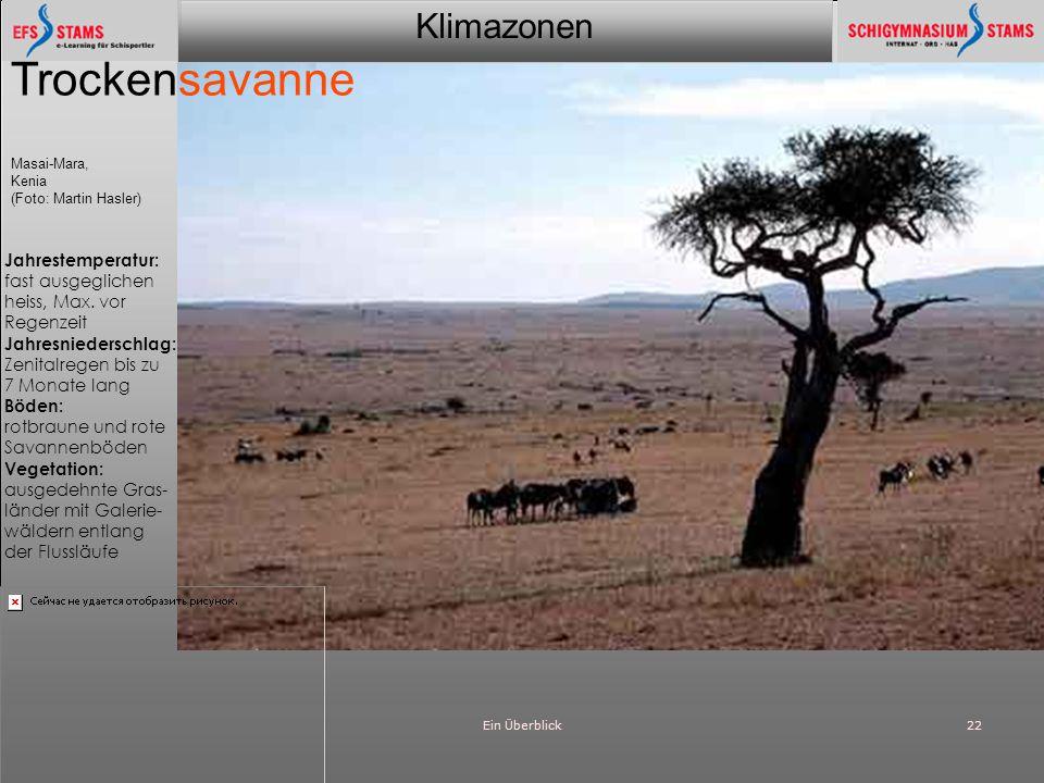 Klimazonen Ein Überblick22 Trockensavanne Masai-Mara, Kenia (Foto: Martin Hasler) Jahrestemperatur: fast ausgeglichen heiss, Max. vor Regenzeit Jahres