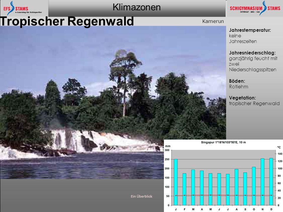 Klimazonen Ein Überblick24 Tropischer Regenwald Jahrestemperatur: keine Jahreszeiten Jahresniederschlag: ganzjährig feucht mit zwei Niederschlagsspitz
