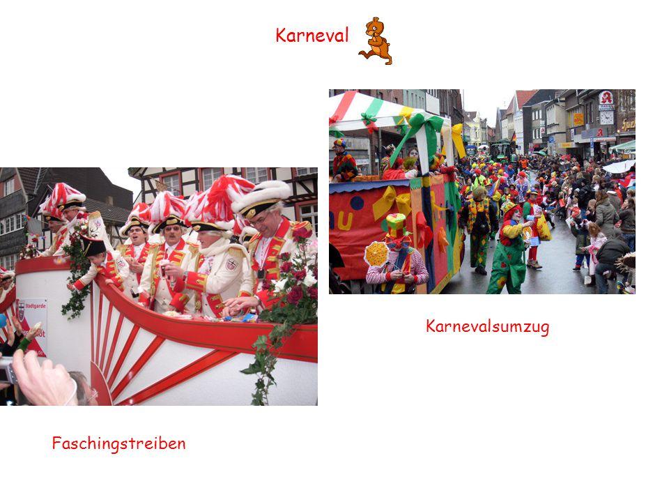 Karneval Faschingstreiben Karnevalsumzug