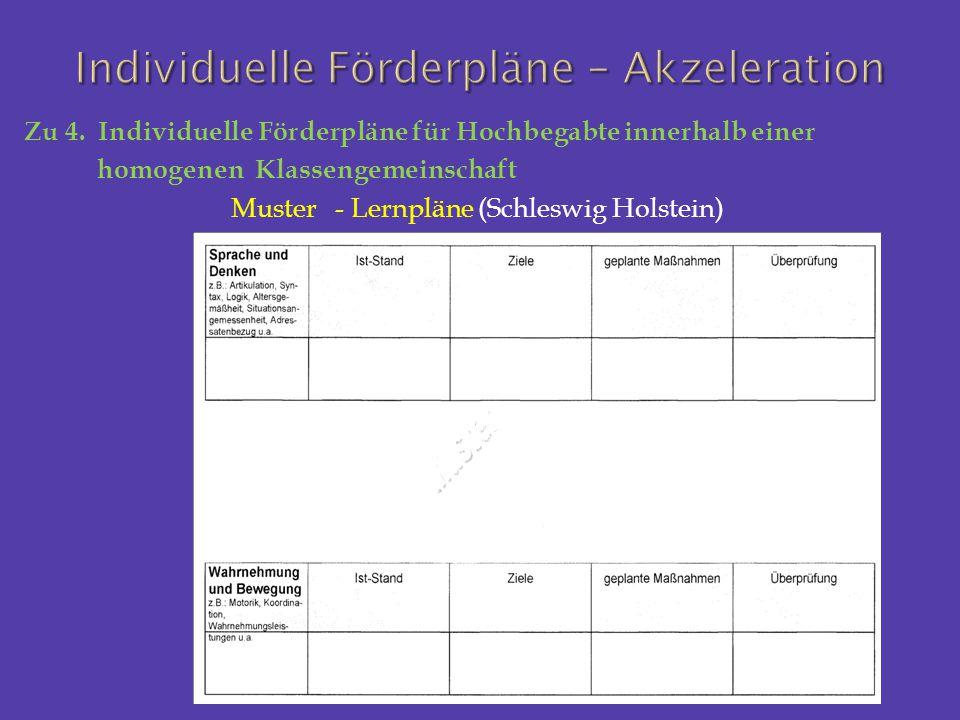 Zu 4. Individuelle Förderpläne für Hochbegabte innerhalb einer homogenen Klassengemeinschaft Muster - Lernpläne (Schleswig Holstein)