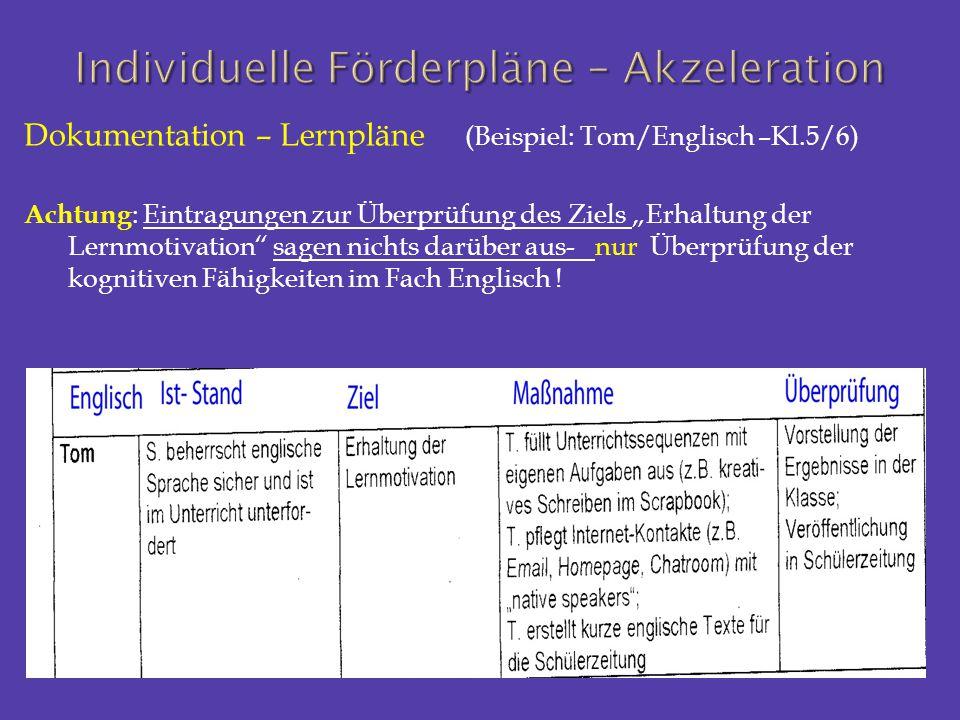 """Dokumentation – Lernpläne (Beispiel: Tom/Englisch –Kl.5/6) Achtung : Eintragungen zur Überprüfung des Ziels """"Erhaltung der Lernmotivation"""" sagen nicht"""