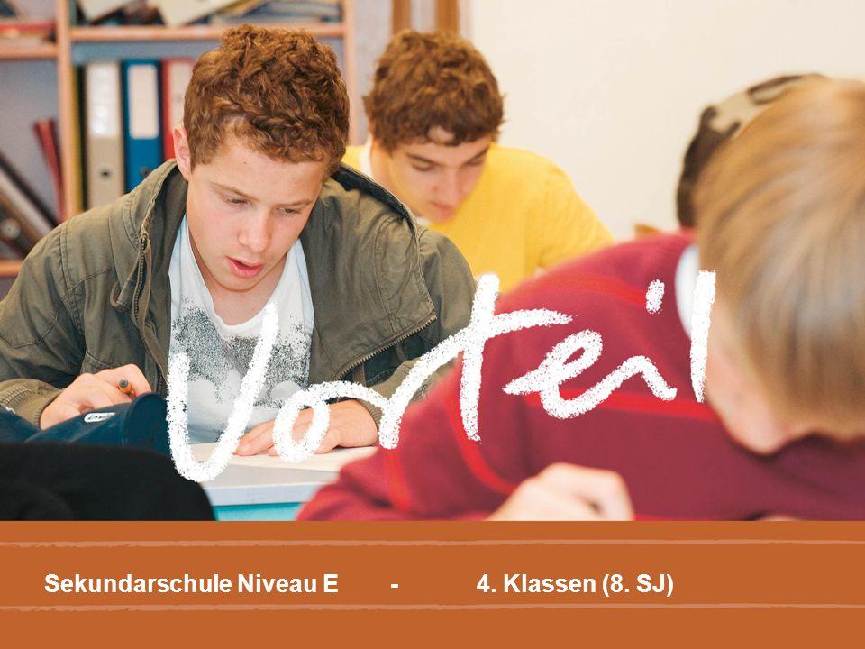 Sekundarschule Niveau E -4. Klassen (8. SJ)