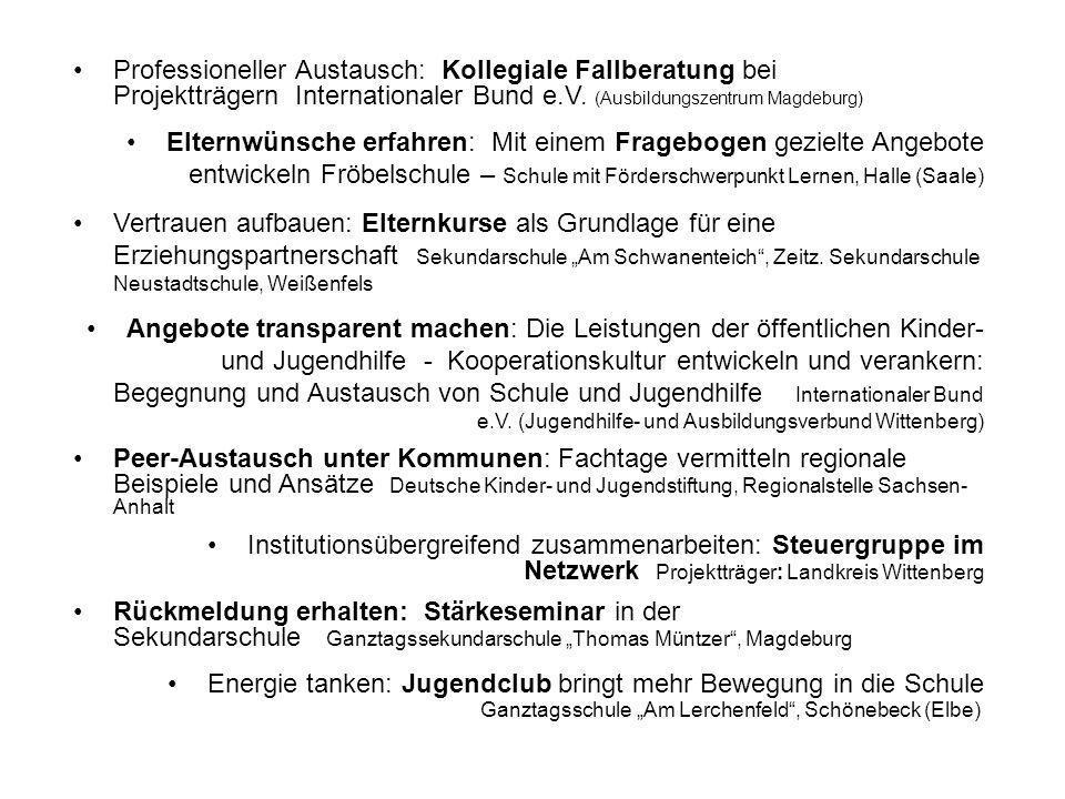 Professioneller Austausch: Kollegiale Fallberatung bei Projektträgern Internationaler Bund e.V.