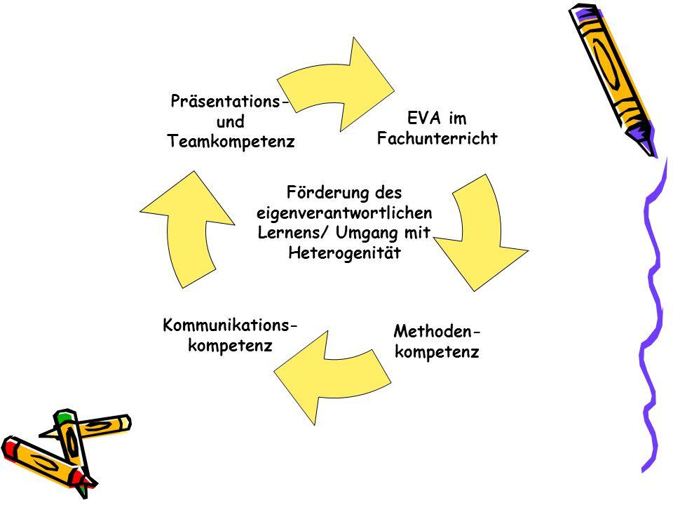 Programm zur Lernförderung in heterogenen Klassen Unterstützungsprogramm 2011 - 2013