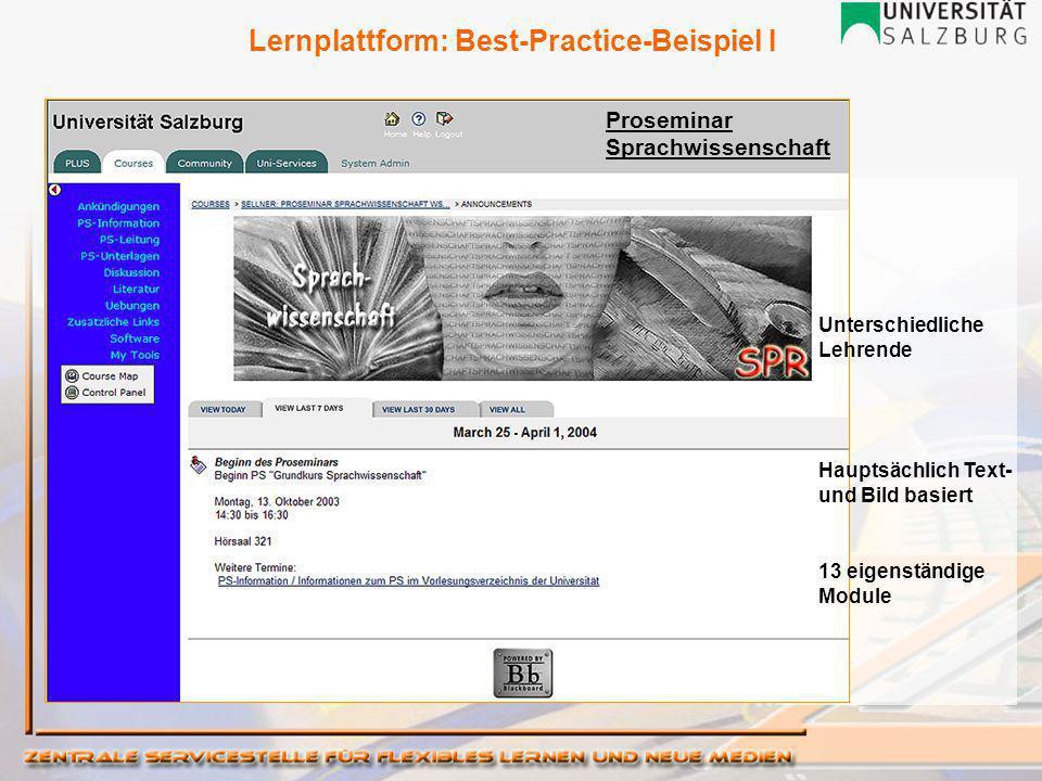 Proseminar Sprachwissenschaft Unterschiedliche Lehrende Hauptsächlich Text- und Bild basiert 13 eigenständige Module Lernplattform: Best-Practice-Beispiel I