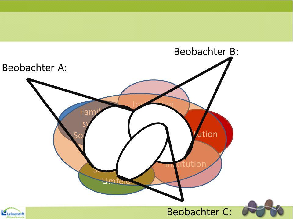 Index- person Familien- system/ Sozialisation Institution Sozialraum/ Umfeld Gesellschaftlicher Kontext/ Rahmen Beobachter A: Beobachter B: Beobachter
