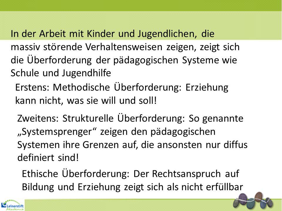 Index- person Familien- system/ Sozialisation Institution Sozialraum/ Umfeld Gesellschaftlicher Kontext/ Rahmen Beobachter A: Beobachter B: Beobachter C: