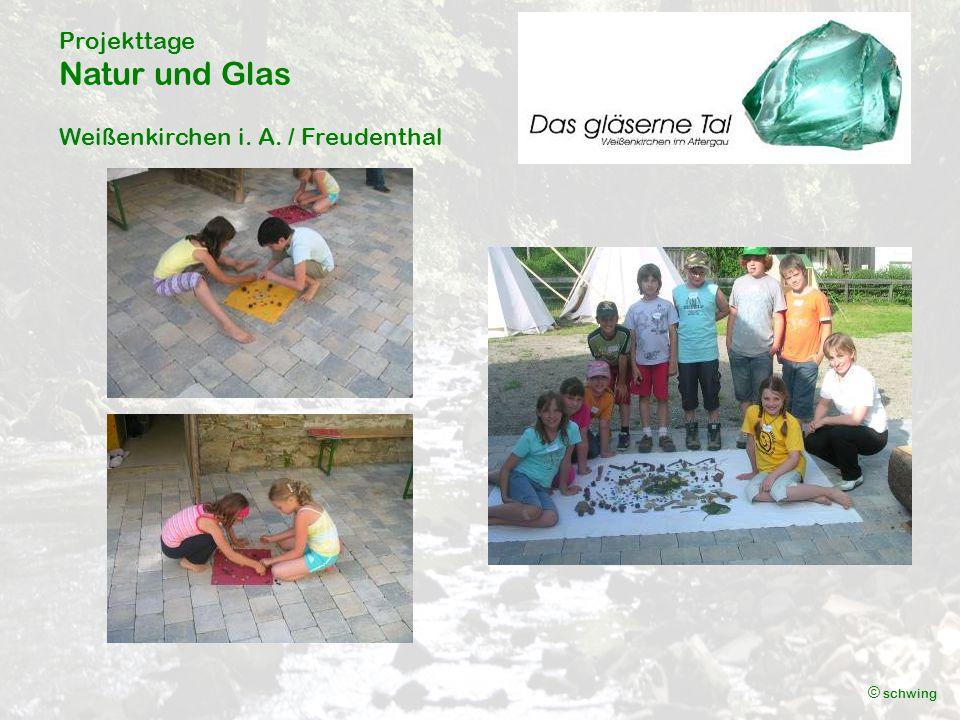 Projekttage Natur und Glas Weißenkirchen i. A. / Freudenthal © schwing