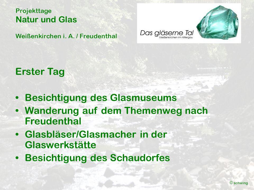 Projekttage Natur und Glas Weißenkirchen i.A. / Freudenthal © schwing Museum Weißenkirchen i.