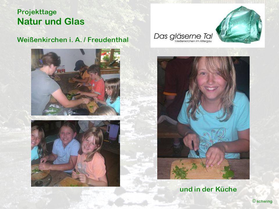 Projekttage Natur und Glas Weißenkirchen i. A. / Freudenthal © schwing und in der Küche