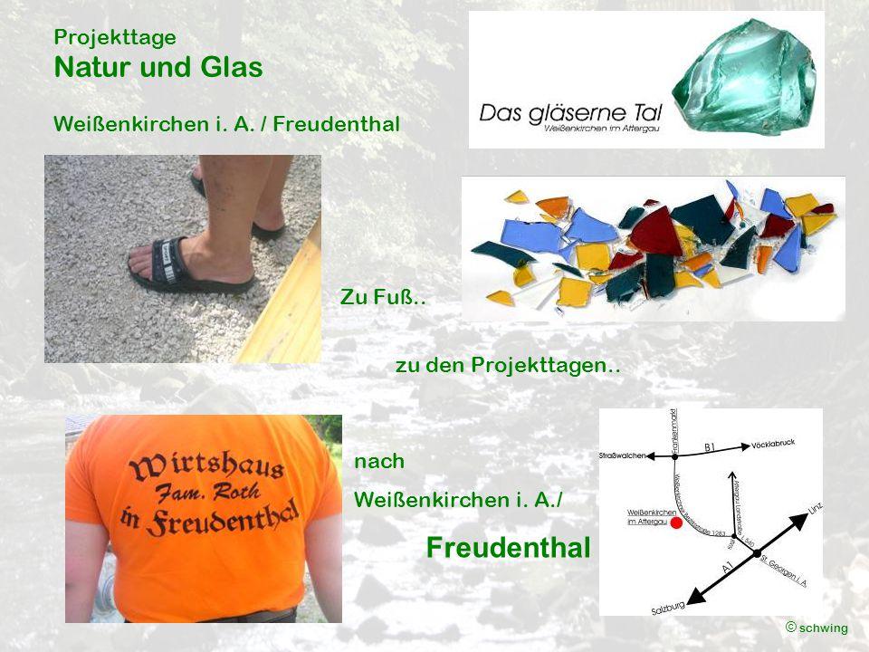 Projekttage Natur und Glas Weißenkirchen i. A. / Freudenthal © schwing Zu Fuß..