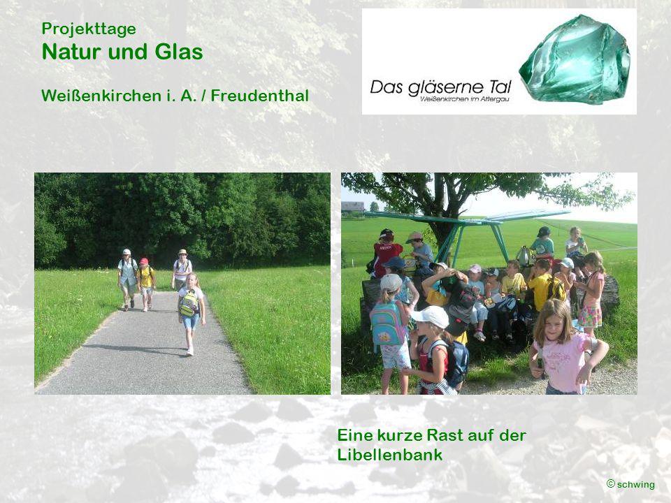 Projekttage Natur und Glas Weißenkirchen i. A.