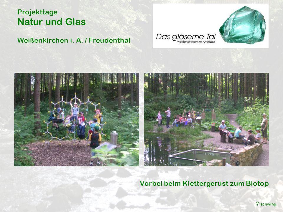 Projekttage Natur und Glas Weißenkirchen i. A. / Freudenthal © schwing Kunstvolle Ergebnisse