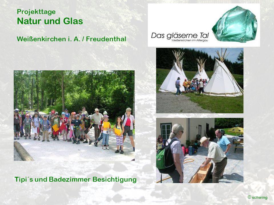 Projekttage Natur und Glas Weißenkirchen i. A. / Freudenthal © schwing Abschlussquiz