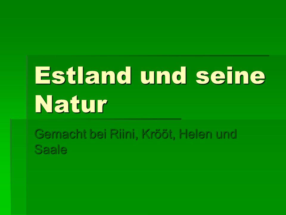 Geografie  Estland ist das nördlichste Land des Baltikums.