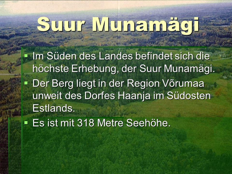Suur Munamägi  Im Süden des Landes befindet sich die höchste Erhebung, der Suur Munamägi.