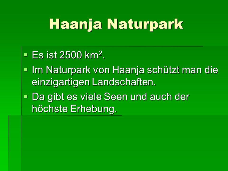 Haanja Naturpark  Es ist 2500 km 2.